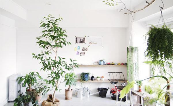 white-modern-living-space