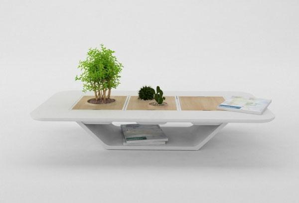 Bonsai-plant-pot-table-665x451