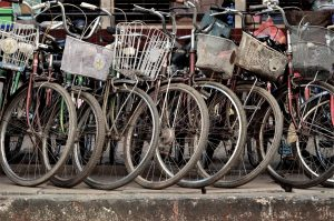 Велопрокат «Крути Педали» становится все более востребованным среди москвичей